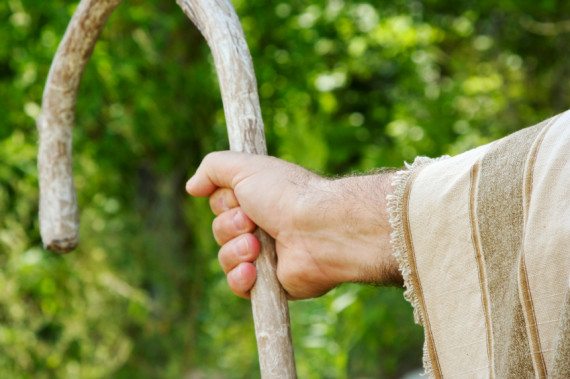 5 Lessons Leaders Should Learn From Good Shepherds